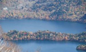 社山の紅葉